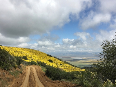 Carrizo Plain from Caliente Ridge