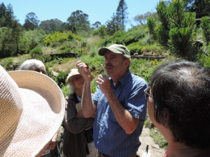 Liam O'Brien leads a butterfly tour for docents Photo by Linda Blide